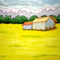 BARN IN MUSTARD FIELD