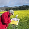 Painting at the Mustard Field